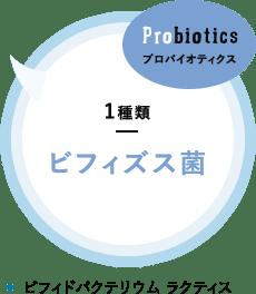 プロバイオティクス 1種類 ビフィズス菌 ビフィドバクテリウム ラクティス
