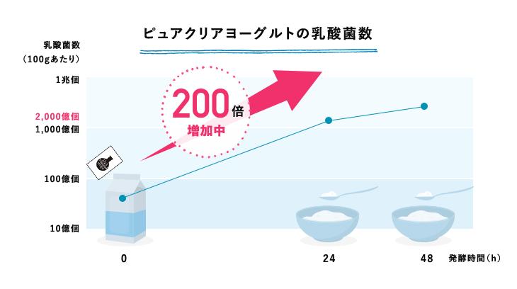 ピュアクリアヨーグルトの乳酸菌数 乳酸菌数(100gあたり)が発酵時間48時間で200倍に増加中