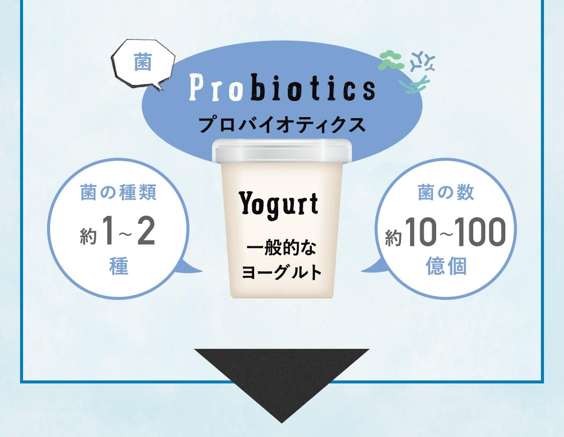Probiotics プロバイオティクス。 一般的なヨーグルト。菌の種類約1~2種。菌の数約10~100億個