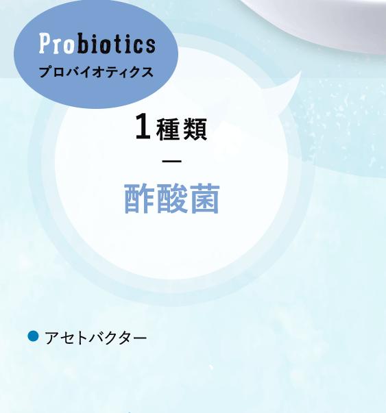 プロバイオティクス 1種類 酢酸菌 アセトバクター